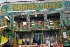 5-Monkey-Maze